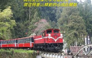 【阿里山图片】驛動的心(阿里山櫻花季有個約定)