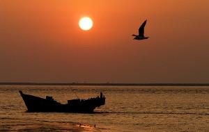 【大洼图片】盘锦红海滩黄昏景色(组图/文)---红海滩秋游1