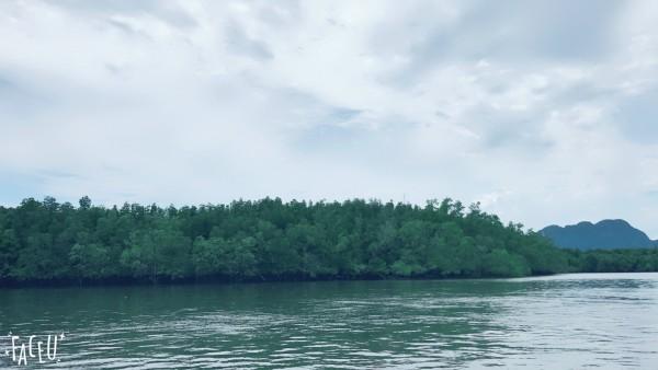 6月19至6月30日曼巴普 甲米四岛跟团游