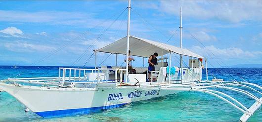 菲律宾薄荷岛包船出海一日游(实力包船 追海豚 超棒浮潜 处女岛 经典