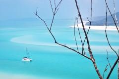 一场开往春天的旅行--东澳艾尔利滩10天绝美自由行