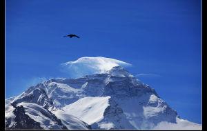 【冈仁波齐图片】世界上最远的距离—是从珠穆朗玛到冈仁波齐……