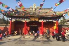 神奇的广仁寺
