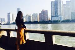#我的2016#不是花没有开,只是我太迟来。广州文艺跨年之旅~