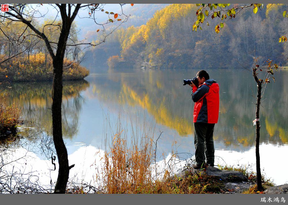 玉渡山自然风景区位于北京市延庆县张山营镇境内,盘踞在龙庆峡景区的上游,依偎在海坨山的脚下,属于燕山山脉的一部分,地貌主要以沟谷、中山、谷地侵蚀阶地组成。该地区内有两条发源于海陀山的河流,丰富的水量滋润着这片山地,形成了我国华北地区难得的多种类森林景观。这里因为水文条件好,人为活动少,具有封闭性,所以这一地区植物生长茂盛,种类繁多。主要有松树、柏树、桦树、椴树、楸树、山杨和辽东栎等乔木以及北京丁香为主的沟谷杂本混交林组成;灌林木主要以山榆、二色胡枝子、平榛、虎榛、绣线菊、鼠李、山桃、荆条、