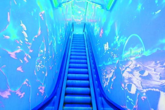 新海洋生物馆,海兽馆,新淡水生物馆,新鲸馆,海底世界,海洋科技馆七大