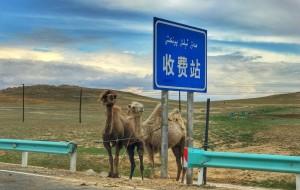 【独库公路图片】2017我的七月.甘肃新疆青海.租一辆车新手上路.环形线路上的歌唱