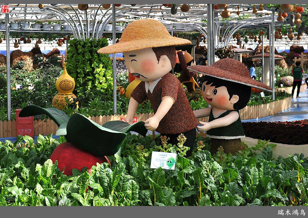 【原创摄影】第五届北京农业嘉年华展示都市现代农业的魅力