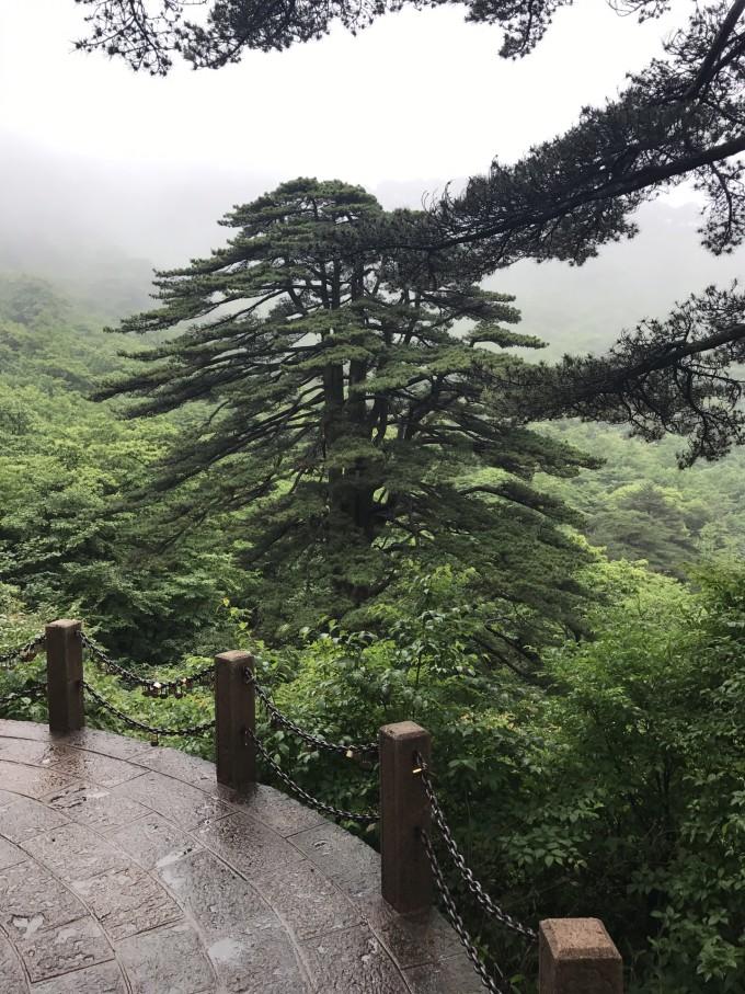 西递宏村黄山千岛湖世界文化遗产名录游