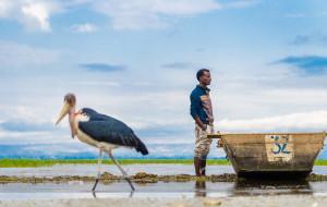 【埃塞俄比亚图片】埃塞俄比亚,这地儿有点不一样