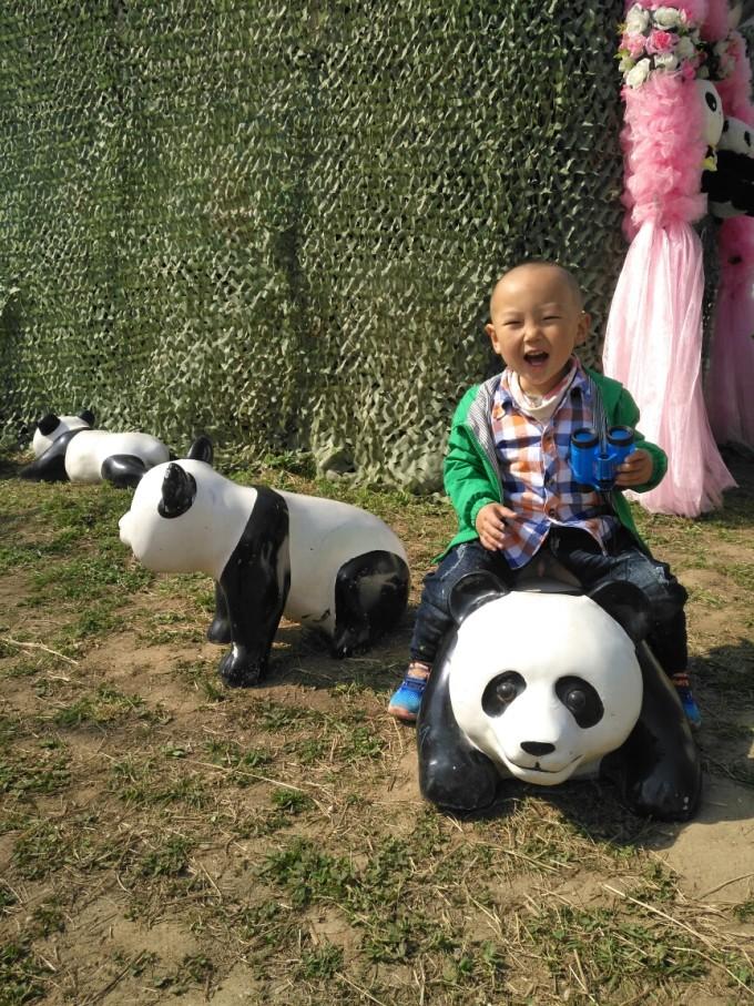 据说这世界上唯一一种假形象没有真实可爱的动物那就是熊猫了,他会让