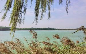 【河南图片】到隔壁省遛遛娃,打发无聊的国庆长假——三门峡双龙湾,天鹅湖湿地公园,豫州地坑院三日游