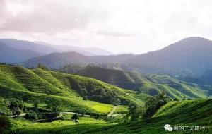 【金马伦高原图片】我在马来西亚的28天——第四站·金马伦高原