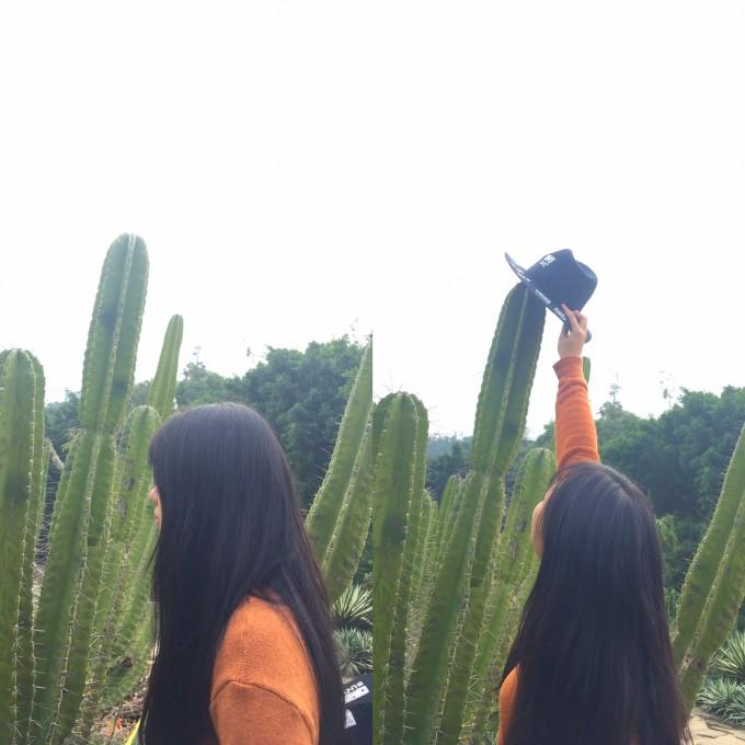 人超少  拍照 开心 植物园真的很大  也很适合拍照  网红仙人掌  人