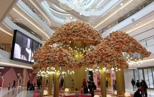 【上海图片】万象城、K11、环球港、大悦城,休闲购物美拍之地(更新)