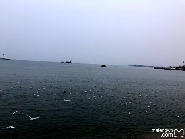 是不是青岛有小香港之称(忘记了)但是的确是和香港非常像.