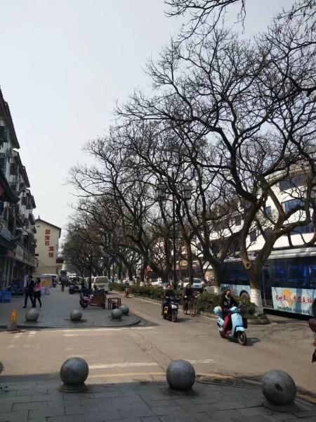 苏州 游记  平江路小吃一条街很不错,晚上适合溜达溜达,小吃很多,从头