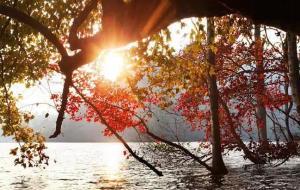 【乐业图片】乐业上岗的枫叶湖,藏于深闺的绝色仙境!