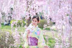 日本·北海道   赴一场北国春樱之宴(独家追樱+拍摄秘籍)