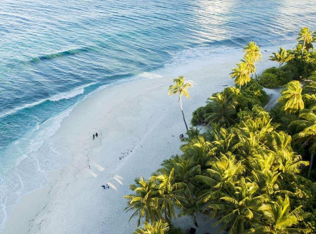 马尔代夫fuvahmulah岛——虎鲨潜水全攻略(整理后转贴
