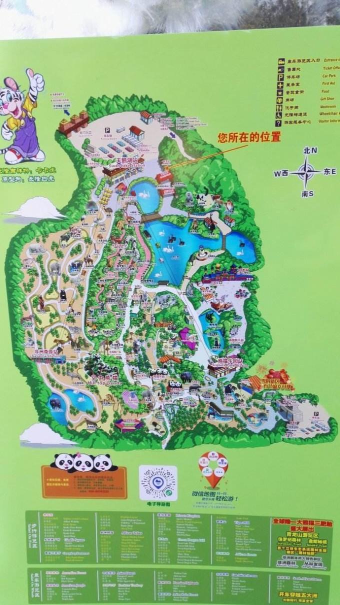 广州亲子五日游(附长隆野生动物园两日攻略)