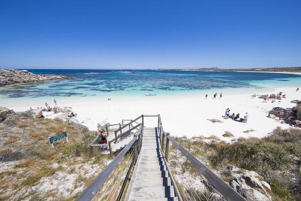 珀斯与西澳旅行秘籍之五:与短尾袋鼠玩自拍