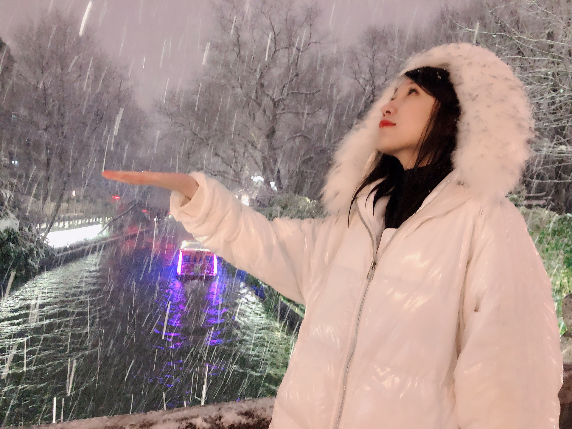 冬季到南方来看雪之金陵