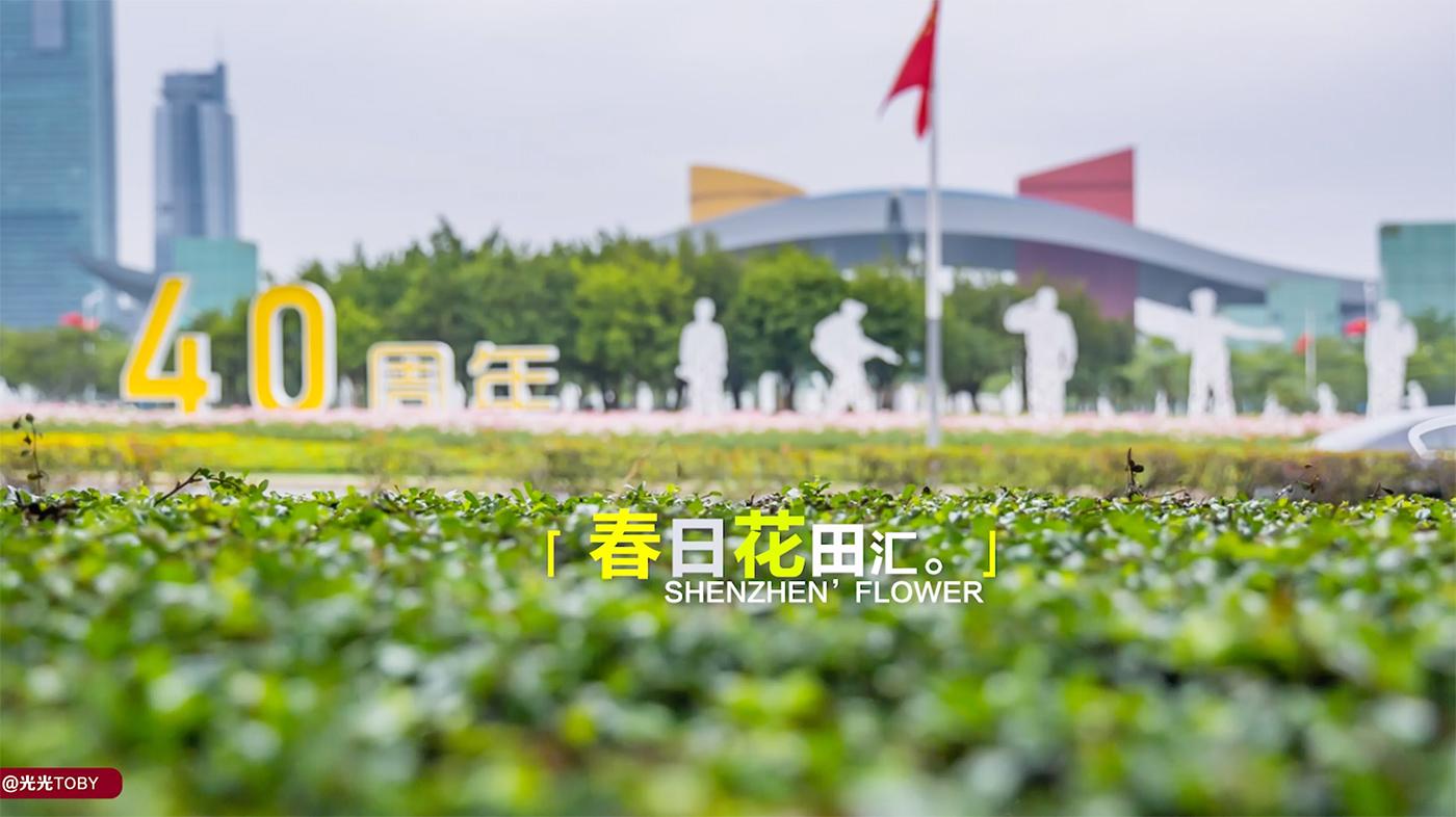 深圳新花海好去处 | 你绝对想不到的地方 | 六大解锁方式 | 竟藏在你办公楼下?