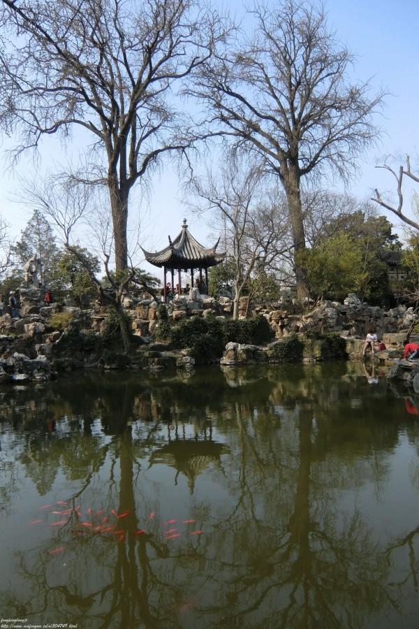 绿茸茸的意思_留园,苏州自助游攻略 - 马蜂窝