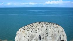 青海湖景点-三块石(孤插山)