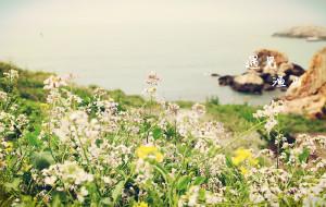 【渔山岛图片】有一个世外小岛,叫渔山。