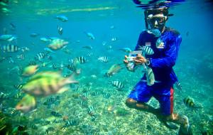 巴厘岛娱乐-蓝梦岛浮潜