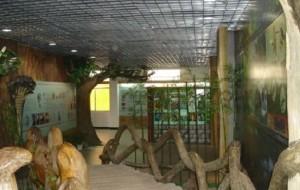 武夷山娱乐-武夷蛇博园