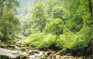 【张家界图片】岩峰仙境張家界