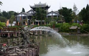 【遂宁图片】20121111遂宁龙凤古镇-硅化木地质公园