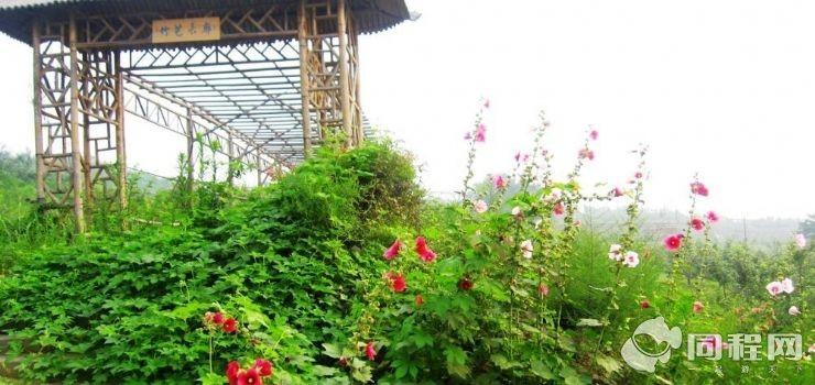北马中观光采摘园