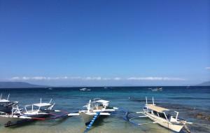 【海豚湾图片】2014闺蜜群菲律宾海豚湾吃喝玩乐OW潜水行【更新中】