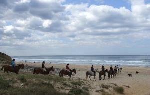 葡萄牙娱乐-Horses in the Sun Day Rides