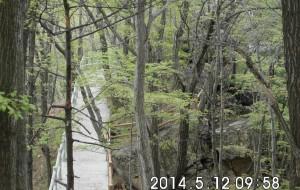 【柞水图片】心中的圣地-------陕西柞水牛背梁