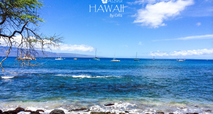 如果将Maui地图顺时针旋转45度,一个清晰的女性半身像就会出现在眼前。在她颈部后方,是整个岛的政治经济中心,也是岛上最主要的机场所在地。而她的眼睛和鼻子所在的位置,分别是一片绝佳的沙滩和有悠久历史的捕鲸小镇Lahaina。茂宜岛的面积仅次于大岛,人口也仅次于欧胡岛,是除了欧胡岛外最热闹的地区。