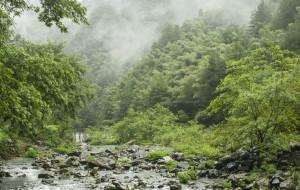 【磐安图片】摄影去(1)雨中游峡谷(持续更新)