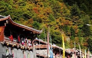 【黑水图片】卡龙沟秋色及浓郁的藏羌风情---五彩斑斓的黑水彩林之一