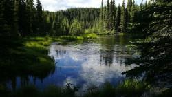 阿拉斯加景点-迪纳利国家公园(Denali National Park and Preserve)