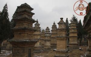 【郑州图片】少林寺塔林-浮屠修来已成林