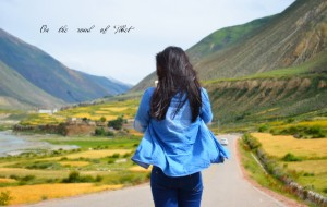 【雅江图片】2014川藏318南线,20天2千元两千公里全程徒搭西藏,趁我还年轻(海量图片慎入)