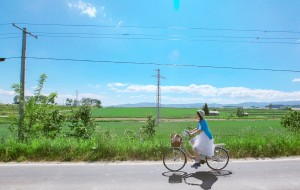 【镰仓图片】【东京北海道】初夏花未央