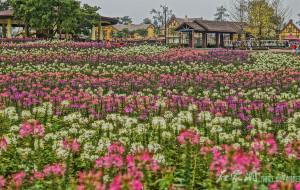 【蒲江图片】五彩的花,碧绿的水--带孩子游石象湖