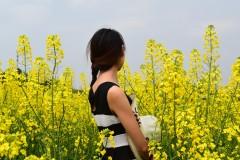 重庆潼南油菜花之行——不负春光,记一段阳光灿烂的旅程!