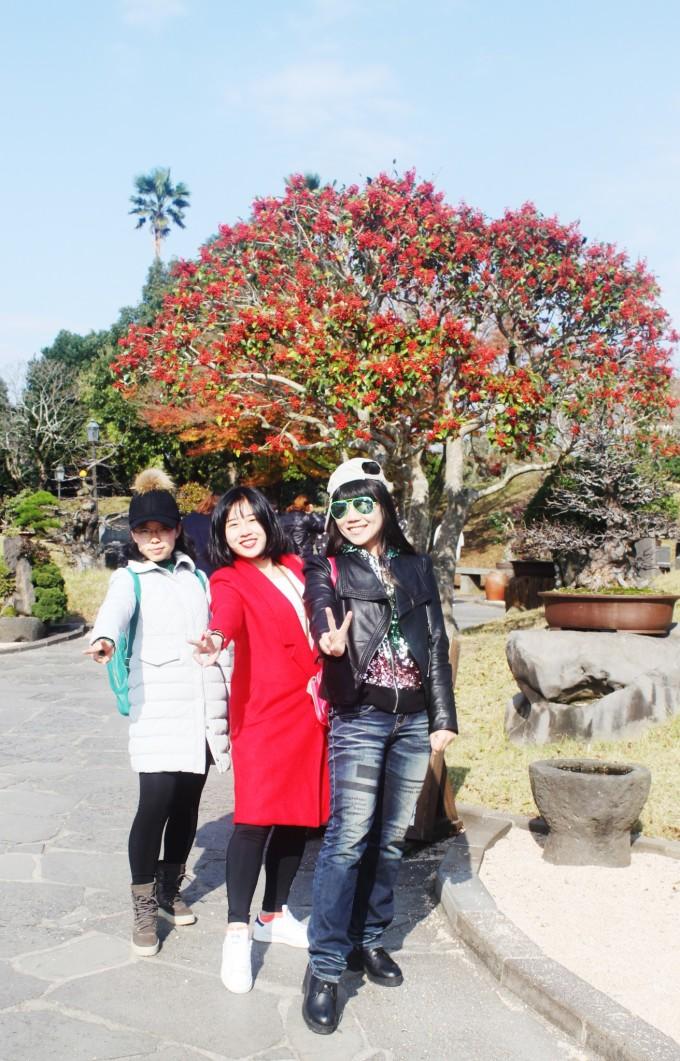 马来西亚樱花岛