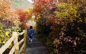 【太原图片】龙山红叶 · 秋意浓